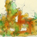 #1053 Watercolor & ink